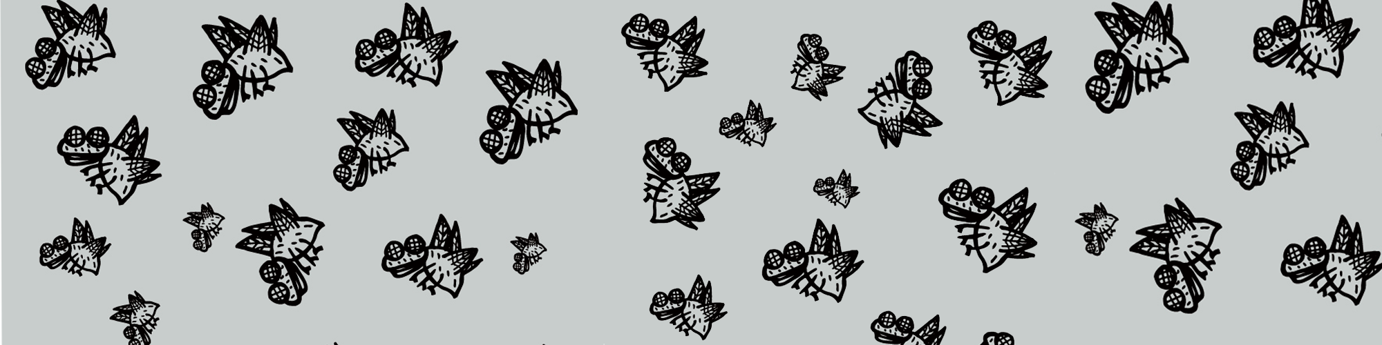 Mahcabra-moscas